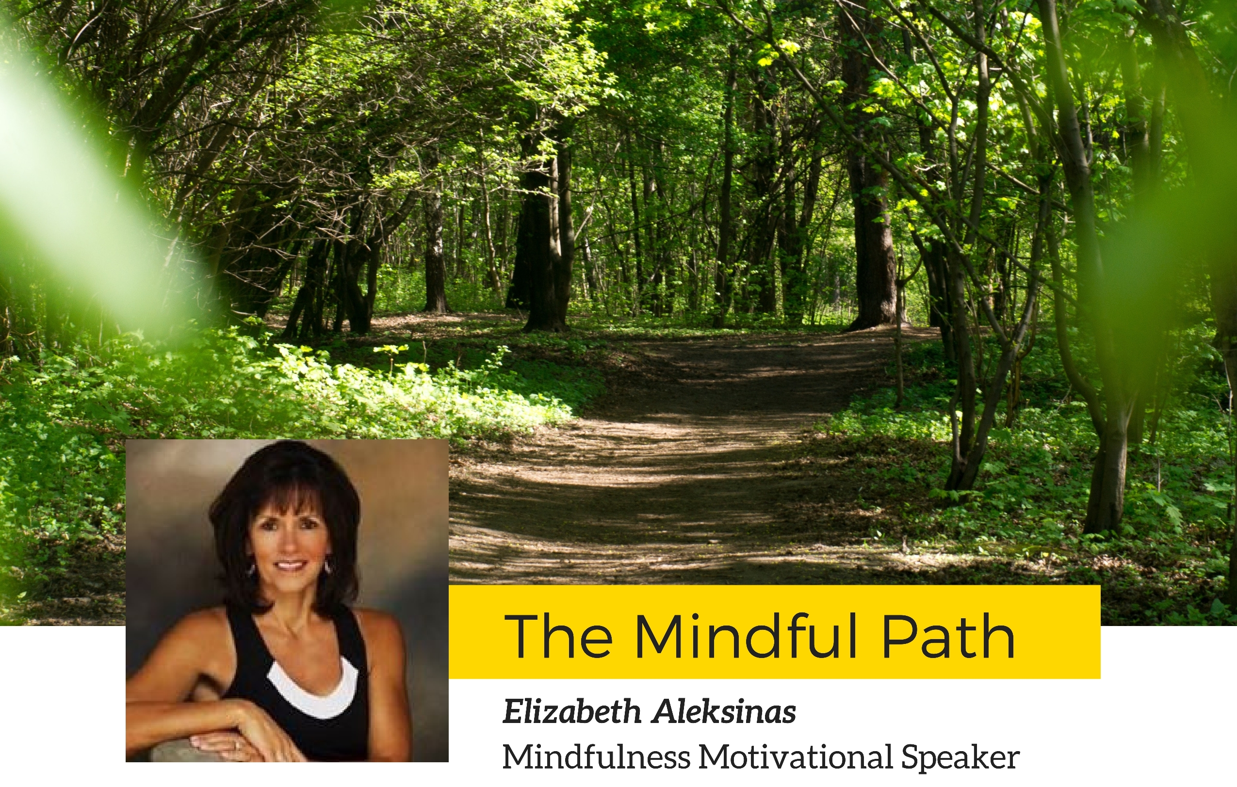Mindful Path Header 1